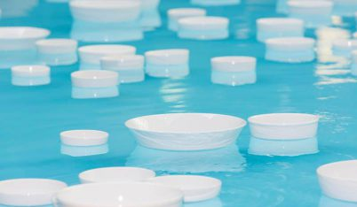 Céleste Boursier-Mougenot, clinamen (détail), 2013 ©Céleste Boursier-Mougenot ©Christian Markel