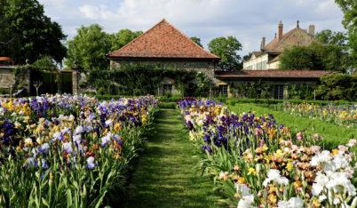 Jardins du Château du Vullierens, Floralis. Espaces contemporains.