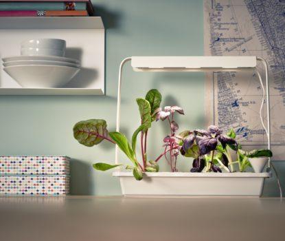Solution décorative pour potager de plantes aromatiques et jardin d'intérieur.